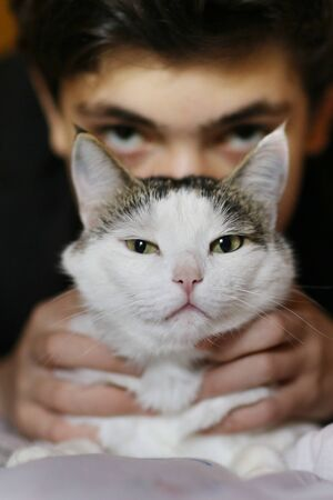 teenager boy sleep with cat in bed close up photo Banco de Imagens - 127679698