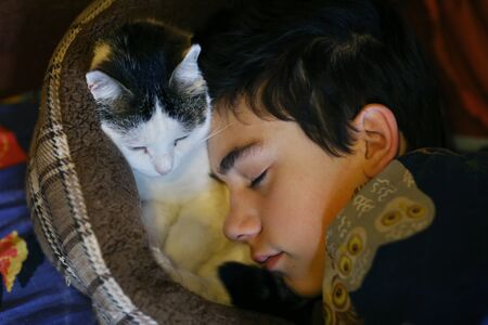 teenager boy sleep with cat in cat bad close up photo