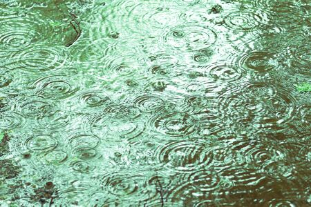 water surface with rain texture - circles and bubbles texture close up photo