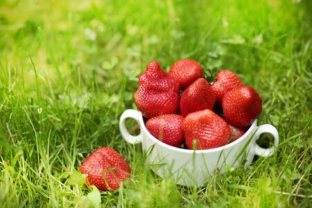 healthy breakfast - strawberries in bowl close up photo on green grass background