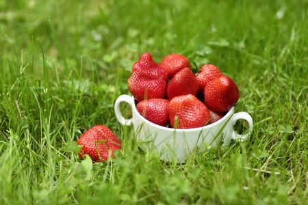 strawberry in bowl close up vertical photo with copy space on green grass background