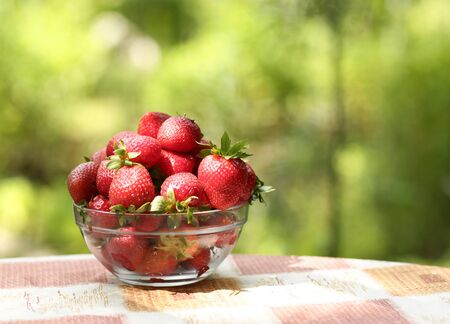 healthy breakfast - strawberries in bowl close up vertical photo with copy space on green grass background