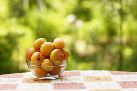 apricots in bowl close up vertical photo with copy space on green grass background Stock Photo