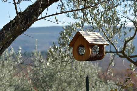 A small bird house outdoor Stock Photo