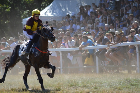 Hippodrome a Sault (South of France, The only horse race in the year, 13 August 2017)