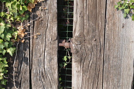 Zoom on an old wooden fence Stock Photo
