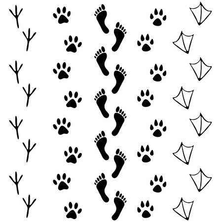 dog track: Vector set of human and animal, bird footprints icon. Collection of bare human foots, cat, dog, bird, chicken, hen, crow, duck footprint. Design for frames, invitation and greeting cards Illustration