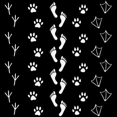 hem: Vector set of human and animal, bird footprints icon. Collection of bare human foots, cat, dog, bird, chicken, hem, crow, duck footprint. Design for frames, textile, fabric, invitation and greeting cards, booklets and brochures Illustration