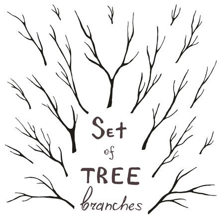 나뭇 가지, 트렁크, 나뭇 가지, 줄기의 집합입니다. 에코 디자인 프레임, 장식, 인사말, 초대장, 엽서. 일러스트