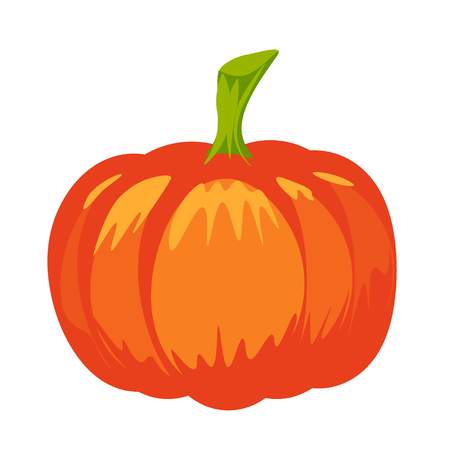 Vector isolated pumpkin. Halloween design. Jack lantern for website, flier, invitation card, stickers