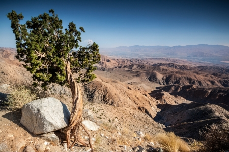 Scenic view over the Coachella Valley from the Joshua Tree National Park Stock Photo - 19574221