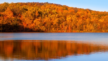sheppard: Fall foliage colors reflected on Sheppard Pond, New Jersey