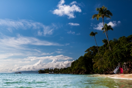 bacardi: Tropical beach with palm trees - Cayo Levantado, Dominican Republic