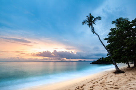 Exotic seascape with a palm tree leaning above the Caribbean sea at sunset, in Cayo Levantado, Dominican Republic Banco de Imagens