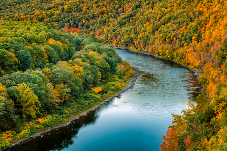forest river: Upper Delaware river bends through a colorful autumn forest, near Port Jervis, New York Stock Photo