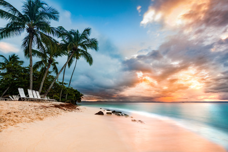 Exotic long exposure seascape with palm trees at sunset, on a public beach in Cayo Levantado, Dominican Republic Standard-Bild