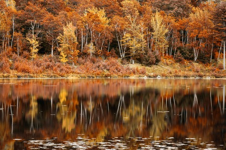 Fall foliage reflection in Jordan Pond, Acadia National Park, Maine Banque d'images - 115066756