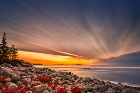 Boulder Beach at sunrise in Acadia National Park, Maine. Banque d'images - 115066761