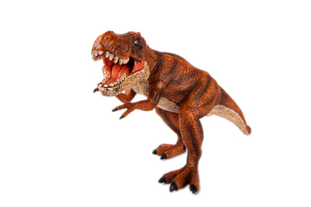 tyrannosaurus rex: Dinosaur Toy Tyrannosaurus Rex at white background