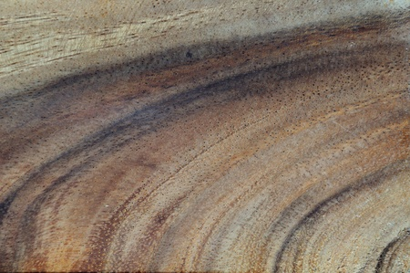 Wood Background Stock Photo - 8744773