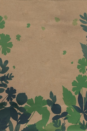 Leaves on Brown Paper Stock Photo