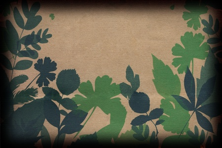 Leaves on Brown Paper Stock Photo - 10990527
