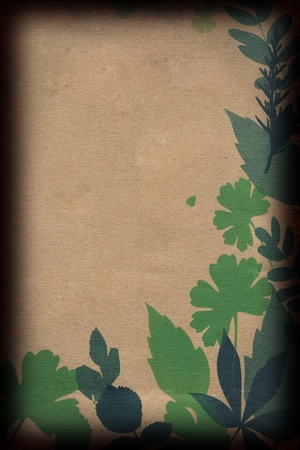 Leaves on Brown Paper Stock Photo - 10990528