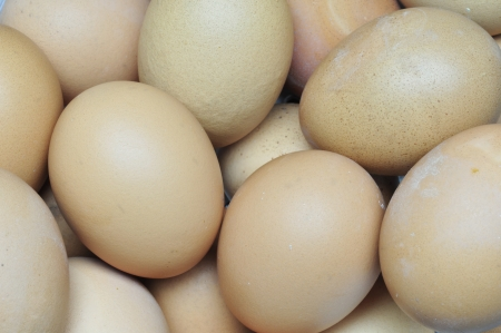 eggs are isolated on a white background Stock Photo - 15219285