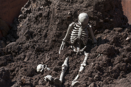 Skeleton sitting on the ground.