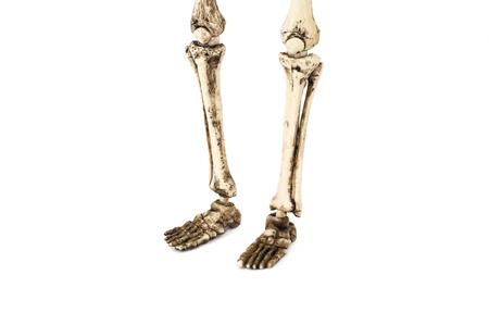 Old skeleton feet isolated on white background.