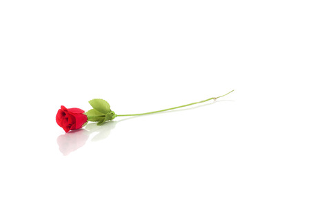 Artificial / fake rose on white background.