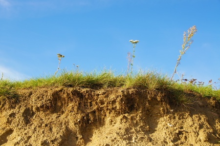 Sommer: Grassy dune under a blue sky Stock Photo