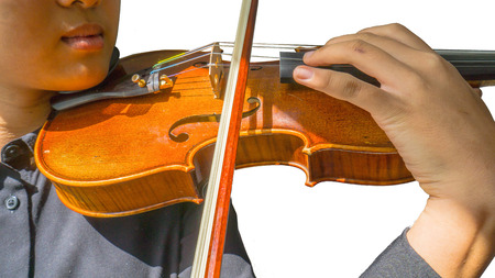 fiddle bow: violin on musician