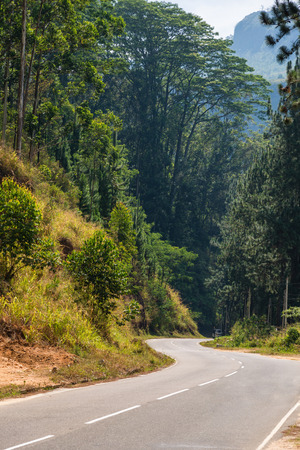 curve road: Road curve in mountains