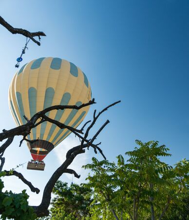 Hot air balloon flying over forest 写真素材