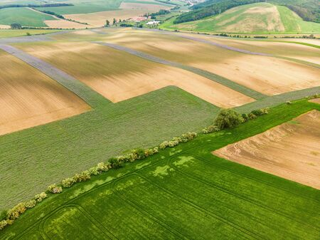 Colorful fields of Moravia, aerial view 写真素材