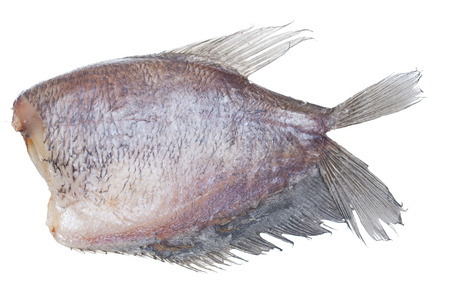 conservacion alimentos: Sun pescado seco aislado en el fondo blanco sin sombra, alimentos preservaci�n estilo tailand�s