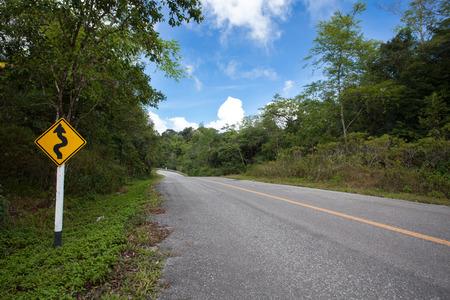 De weg door het bos.