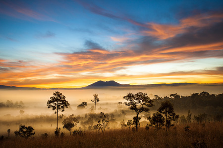 Morring zonsopkomst in Thung Salaeng Luang nationaal park, Petchaboon, Thailand