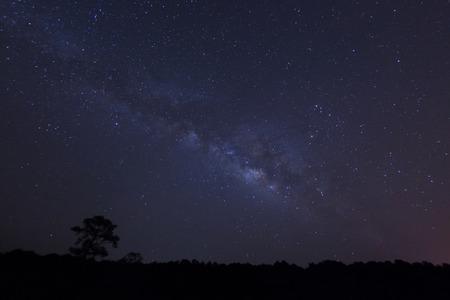 Melkweg over het bos.