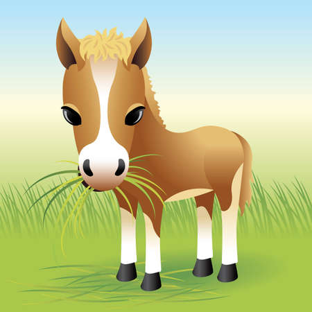 kids eating: Baby Animal collection: Horse