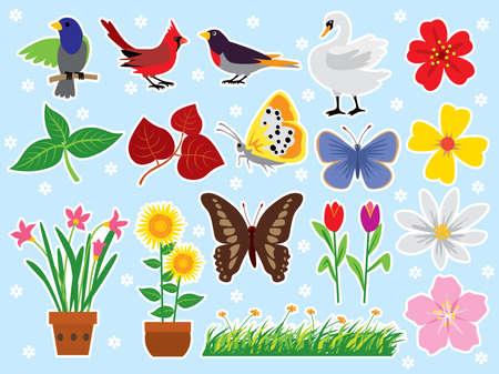 Various nature design elements. Illustration