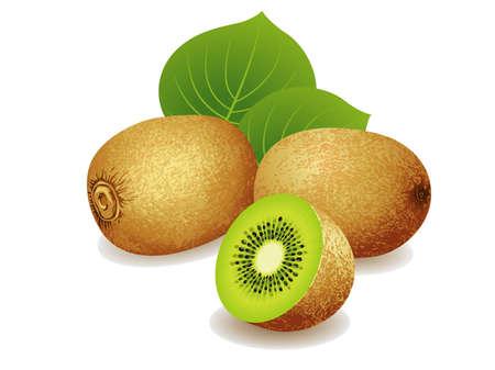 kiwi fruta: Ilustración vectorial realista de un montón de frutas kiwi.