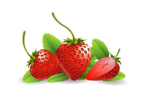 Realistic vector illustration of strawberries and a half strawberry.