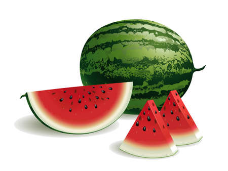 Realistic vector illustration of a watermelon and watermelon slices.