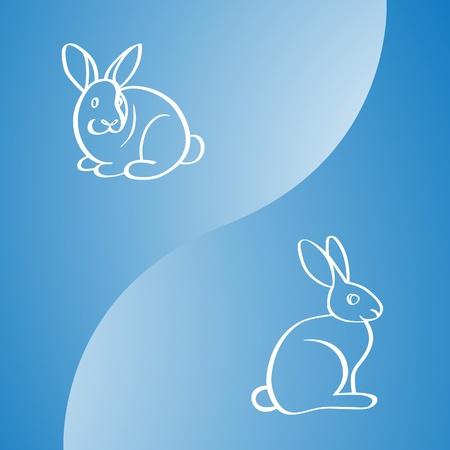 image of two rabbits  Illustration