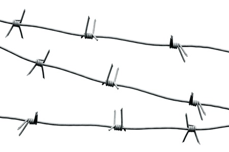 Barbed wire. Isolated on white background photo