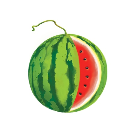 illustration of watermelon with clipping patch Stock Illustration - 14168471