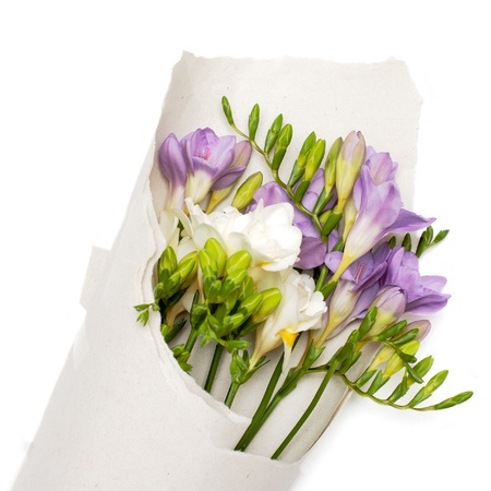 bouquet of freesia in the paper  Isolated on white Stock Photo - 16631821