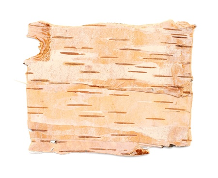 Natural background: birch bark, prepared for use: paintings, to manufacturing of decorative hand-made articles, and so on Stock Photo - 16631836